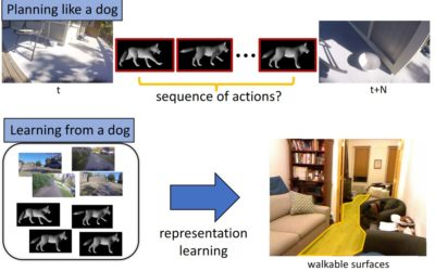 Who's a good AI? Dog-based data creates a canine machine learning system